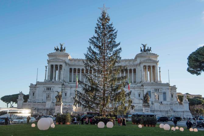Breve storia di Spelacchio: l'albero di Natale più famoso al mondo